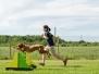 Sommerfest und Tag des Hundes